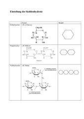 Struktur und Funktion der Kohlenhydrate