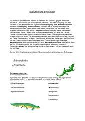 Evolution und Systematik Amphibien
