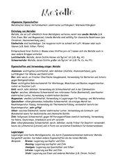 Kurzer Text über Metalle (1 Seite)