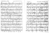 Wernigeröder Tanzbüchlein von 1786 - originale Kneipenmusik - Teil 1