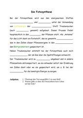 Lückentext zur Fotosynthese (Kl. 8)