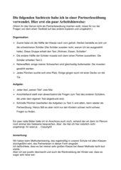 Fledermaus-Sachtexte-Partnerleseübung