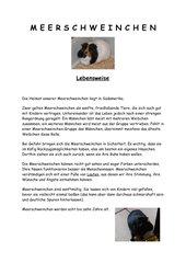 Haustiere - Informationsblätter