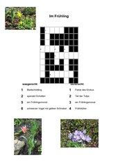 einfaches Kreuzworträtsel, ab Klasse 2, Frühblüher