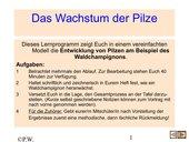 Entwicklung der Pilze (Bspl. Waldchampignon)