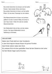 Leseverständnistest / Lese-Mal-Blatt Haustiere, Klasse 2