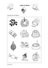 12 Bildchen: Vögel im Winter - Was darfst du nicht füttern?