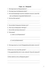 Blutspende - Fragen zur Broschüre der BZgA