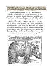 Dürers Rhinozeros zerlegt