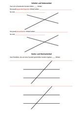 Scheitel-, Neben-, Stufen- und Wechselwinkel