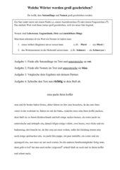 Satzanfänge und Nomen werden groß geschrieben