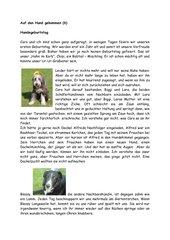 Auf den Hund gekommen (6)