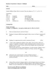 Hallum et  Louveau: Choc des cultures  Klausur 11. Klasse