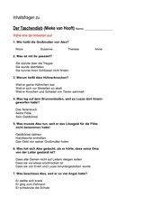 Der Taschendieb  (Mieke van Hooft) : Inhaltsfragen