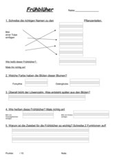 Lernzielkontrolle Frühblüher
