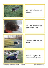 Lesekarten - Hunde (Zuordnung Bild - Satz)