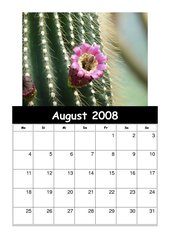 Kalender 2008/09 Teil 1