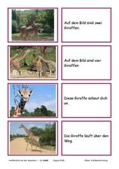Lesekarten Giraffe (Zuordnung Bild - Satz)