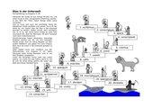 Stau in der Unterwelt: Formenübung zu Auspicia II 39