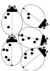 Marienkäferspiel -  Mengenerfassung bis 6