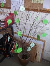 Mein Baum ist für mich ...