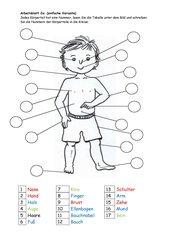Körperteile beschriften