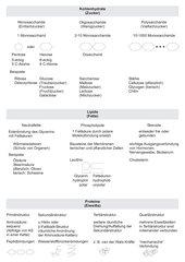 Übersicht Kohlenhydrate, Lipide, Proteine