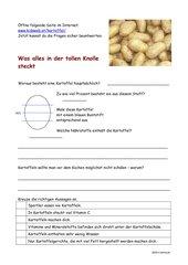 gesunde Kartoffel