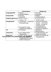 Vergleich Zellatmung und Fotosynthese