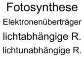 Begriffslernen Fotosynthese