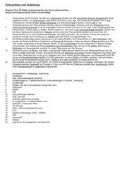 Fehlertext Fotosynthese und Zellatmung