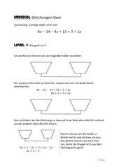 Erarbeitung von Gleichungen