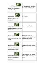 Maikäfer - Quizkarten zum Ausdrucken und Laminieren