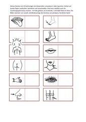 Blankovorlage f. Zuordnungsspiel / Domino Körperteile - für alle Sprachen