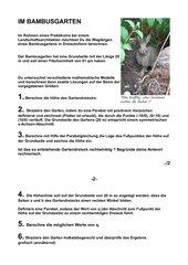 Bambusgarten Mathematik Aufgaben und Lösungen 9. Klasse