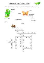 Tiere Und Pflanzen der Wiese