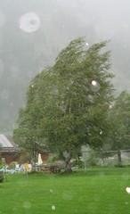 Sturm - Sturm, Wind, Wetter, Gewitter, Regen, Unwetter, Windstärke