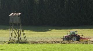 Traktor bei der Feldarbeit - Wiese, Feld, Heu, Landmaschine, Heuwender, Heuwendemaschine, Kreiselwender, mähen, Bauer, Landwirt, Hochstand, Jägerhochstand, Jagd, Sommer, Feldarbeit, Beruf