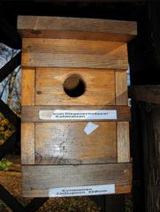 Nisthilfen #4 - Nisthilfen, Vogelhäuschen, nisten, brüten, Höhle, Vögel, Natur, Naturschutz