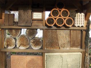 Insektenhotel #2 - Nisthilfen, nisten, brüten, Höhle, Insekten, Natur, Naturschutz