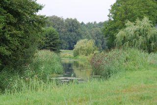 Flußlandschaft#2 - Fluss, Landschaft, Sommer, Wasser, Gewässer