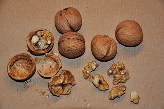 Walnüsse - Walnuss, Nuss, Kern, knacken, Anlaut N, Weihnachten, Fettsäure, Omega-3