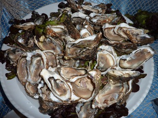 Austern - Austern, Muscheln, Lebensmittel, Weichtier, Schalenweichtier