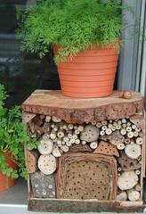kleines Insektenhotel - Insektenhotel, Insekten, Wildbienen, Bruthilfe, Höhlung, Nisthilfe, Schädlingsbekämpfung, Schädling