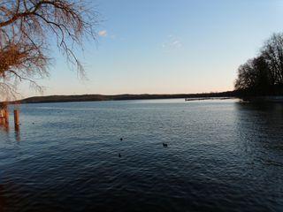 Der Müggelsee#1 - See, Gewässer, Berlin, Frühling, Wasser, windstill, wolkenlos, Impression, Ansicht, Meditation
