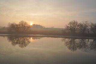 Morgens am See - Nebel, Nebelschwaden, neblig, Landschaft, See, Bäume, Sonne, Sonnenaufgang, Morgen, morgens, Stimmung, Erzählanlass, Kalenderbild, Spiegelung, Symmetrie
