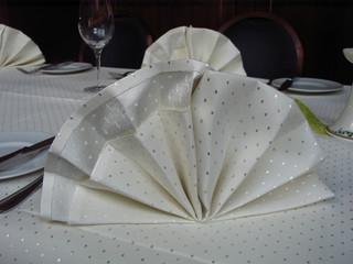 Serviettenfaltung Fächer - Tischdekoration, Serviettenfaltung, Fächer, einfacher Fächer
