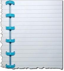 Ringbuch_liniert_Ausriss - Schule, Büro, Heft, Ringbuch, schreiben, liniert