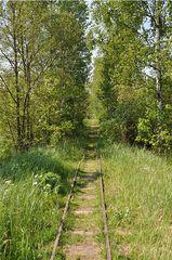 Wege # 3 - Weg, Schiene, Gleis, Eisenbahn, alt, Perspektive, Erzählanlass, gerade, verwachsen, Meditation, Fluchtpunkt