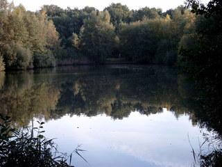 Herbststimmung am See - See, Bäume, Natur, Reflexion, Spiegelbild, Herbst